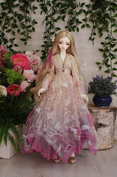 Abricot Rose