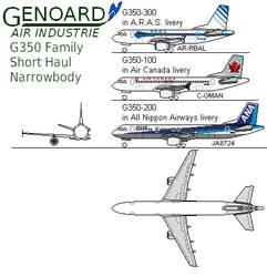 Genoard G350 Family, Airliners
