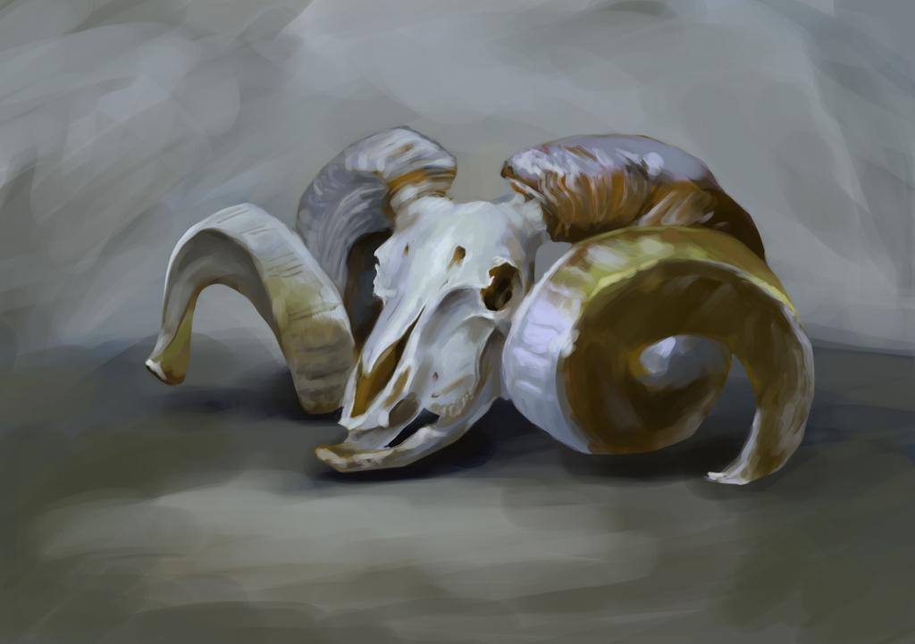 Ram's Skull by BlueberryMarina