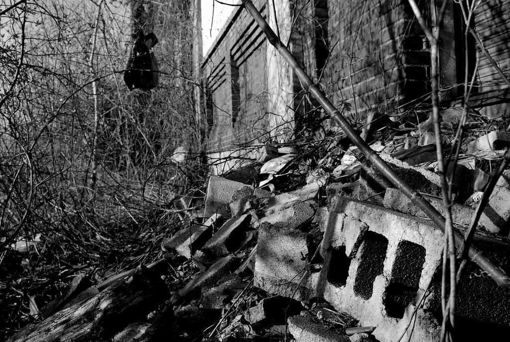 In Ruins by coffeenoir