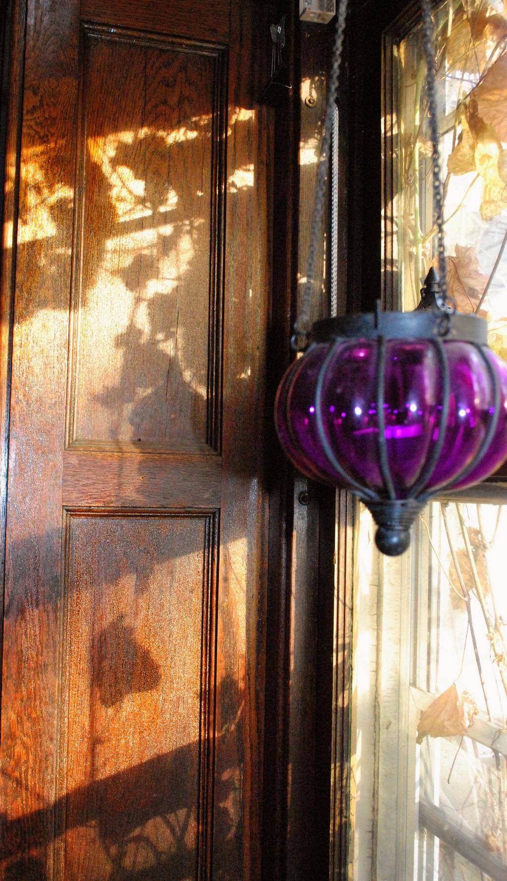 Grape Leaf Shadows by coffeenoir