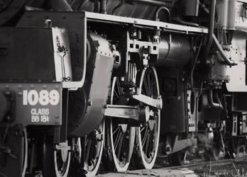 Q150 Steamer