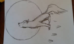 Dis Is A Wolf...I Think