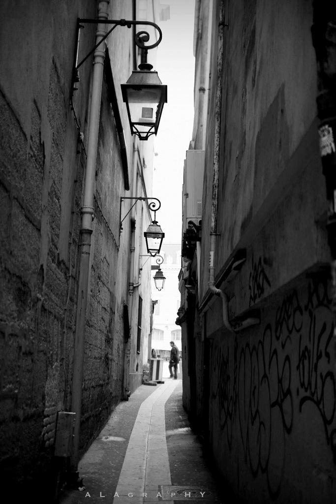 Parisian Street by alahay
