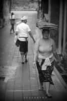 bali street by alahay