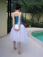 ballet25 by penguinpantsstock