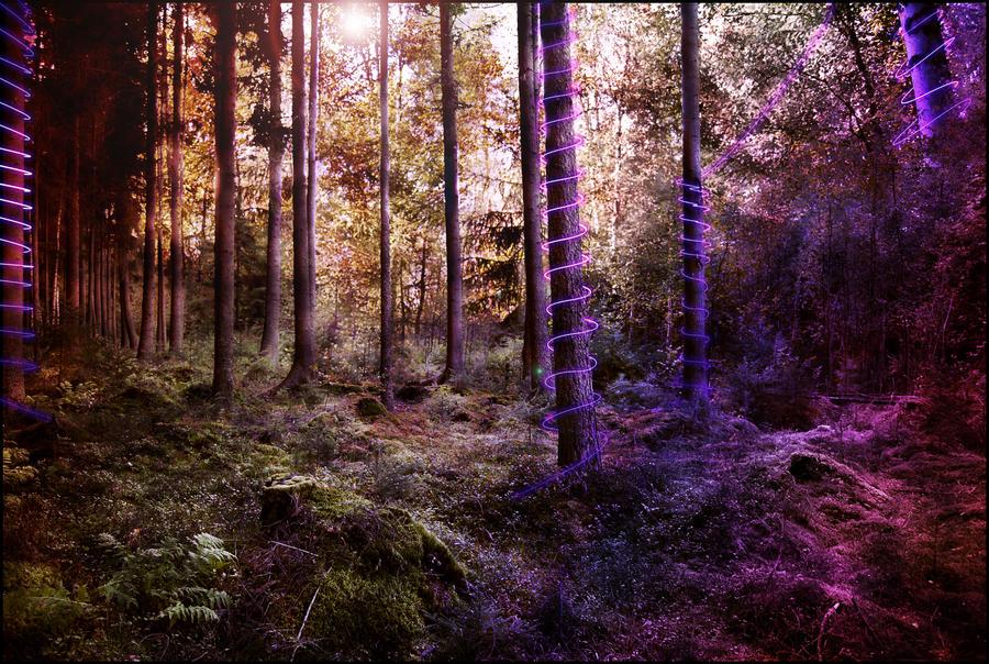Fantasy Woods by kornolho