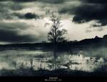Swamp - Pantano