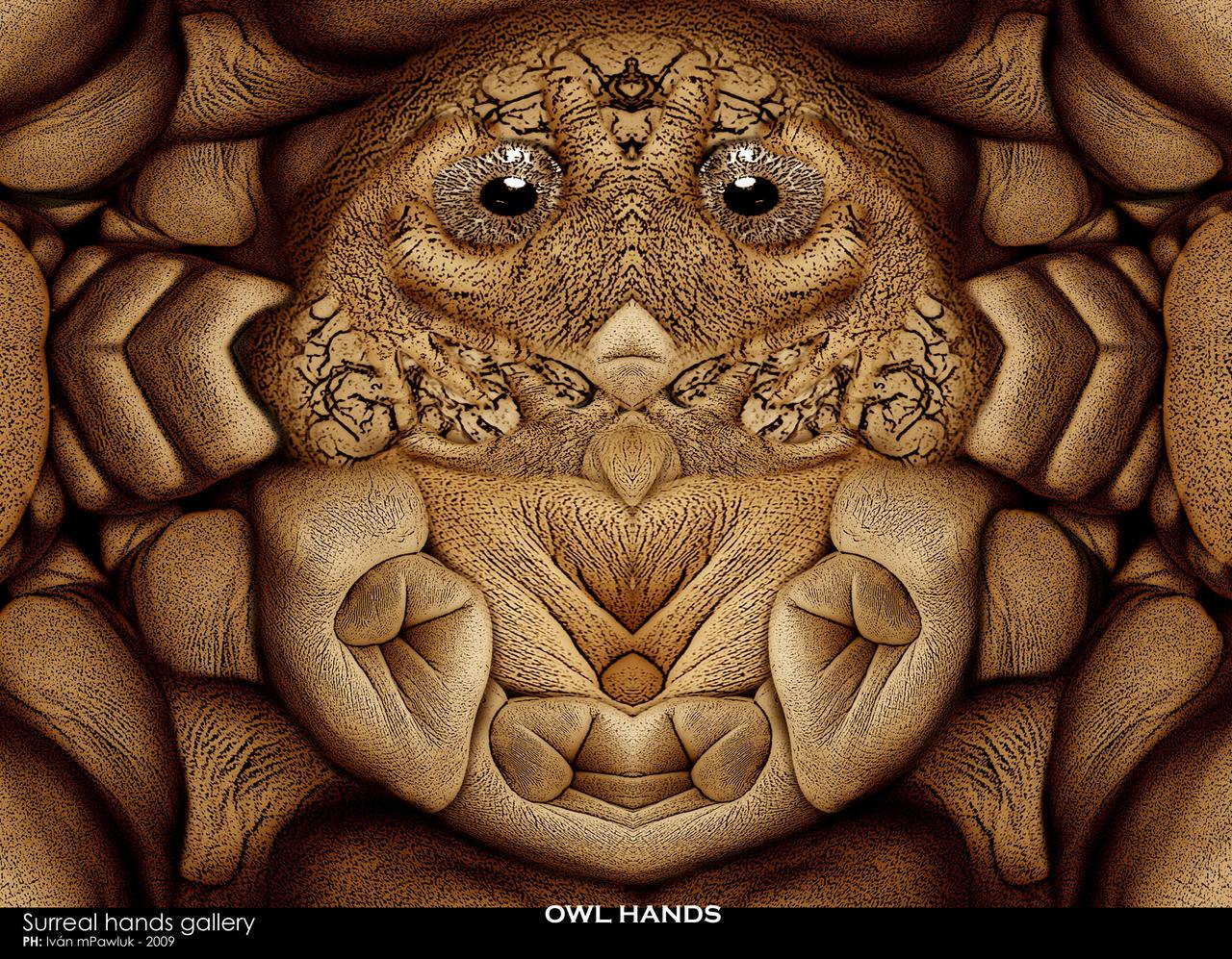 OWL HANDS