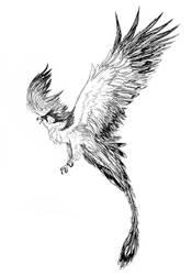 Avis concept/sketch by FireEagleSpirit