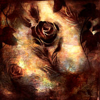 grungy rose by ichi23