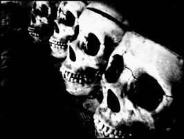 skulls by nerdiekween