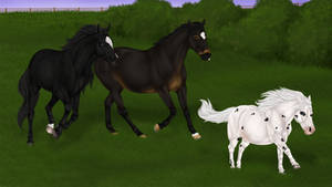 Canter, Canter, Gallop! by LunarRocketStables