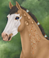 Domi for Wild-Heart-Stables by LunarRocketStables