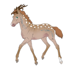 ID:N282 Foal Design for Pipanddanny