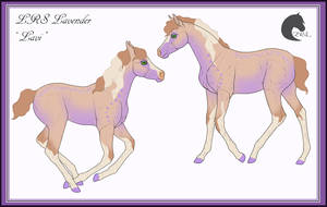 LRS Lavender   ID: N963 by LunarRocketStables