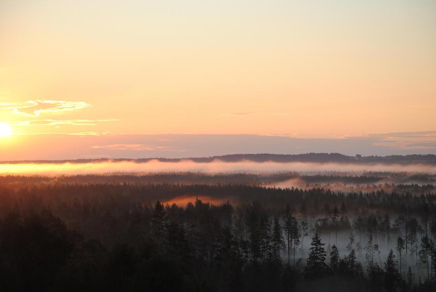 Wondeful morning by Akatamy