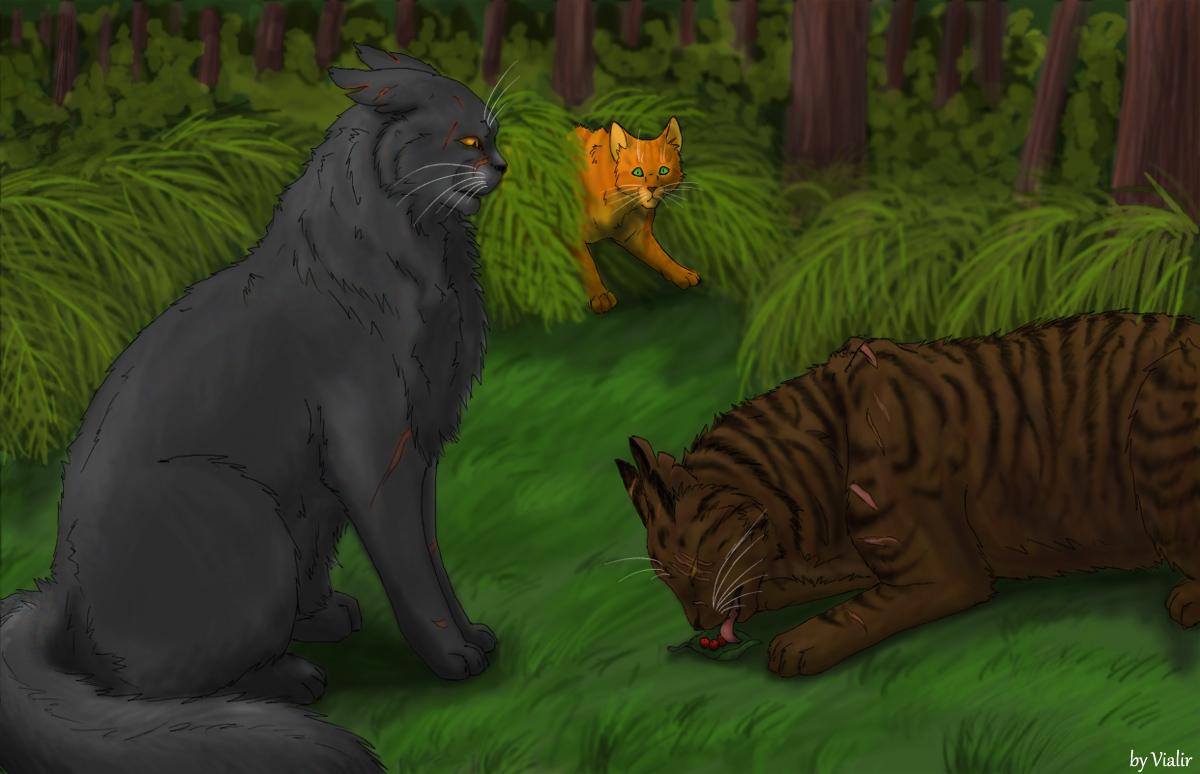 Yellowfang And Fireheart Warrior Cats Yellowfan...