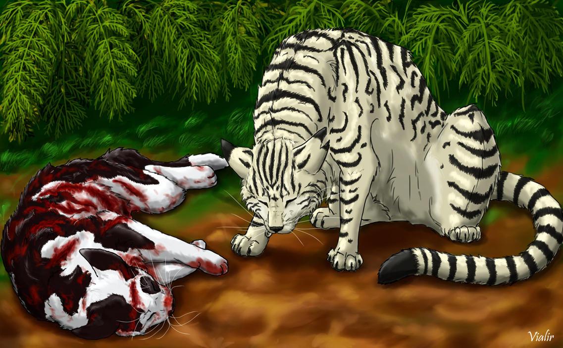 Vialir Warrior Cats