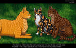 Fireheart, Tawnypaw and Bramblepaw