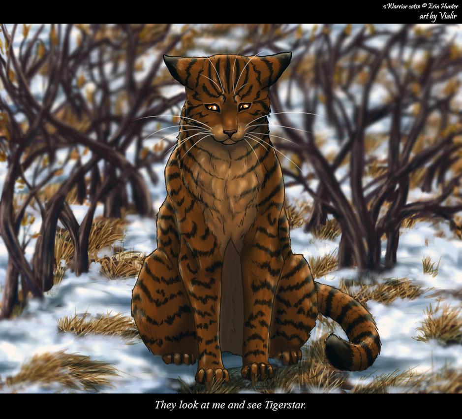 Výsledek obrázku pro warriors cats brambleclaw and tawnypelt