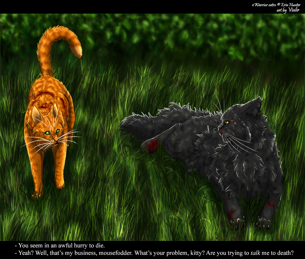 Into The Wild Warriors Book: Firepaw And Yellowfang By Vialir On DeviantArt
