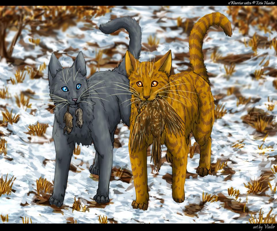 Warriors Erin Hunter Squirrelflight: Cinderpaw And Brackenpaw By Vialir On DeviantArt