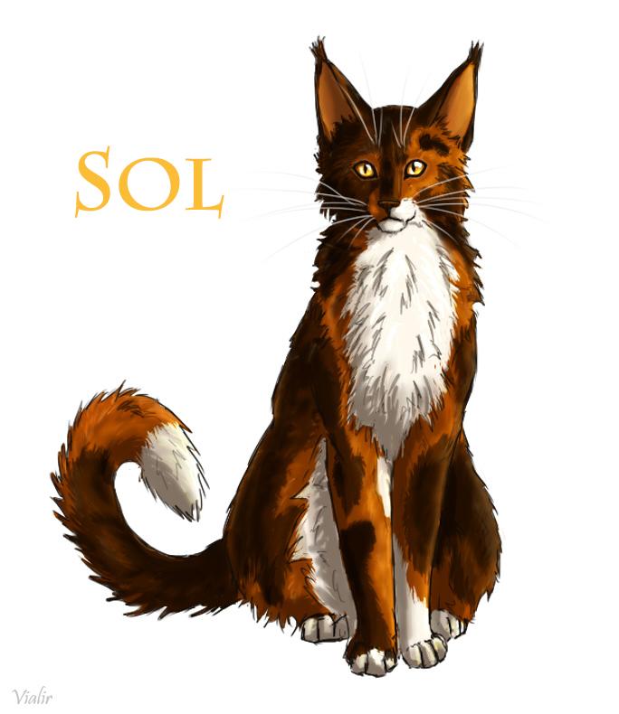 Sol by Vialir