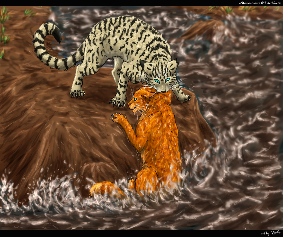 Longtail And Fireheart By Vialir On DeviantArt