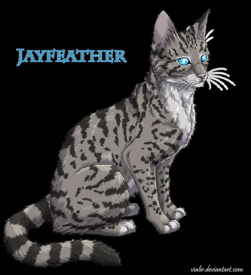 Warrior Cats Jayfeather Jayfeather by V...