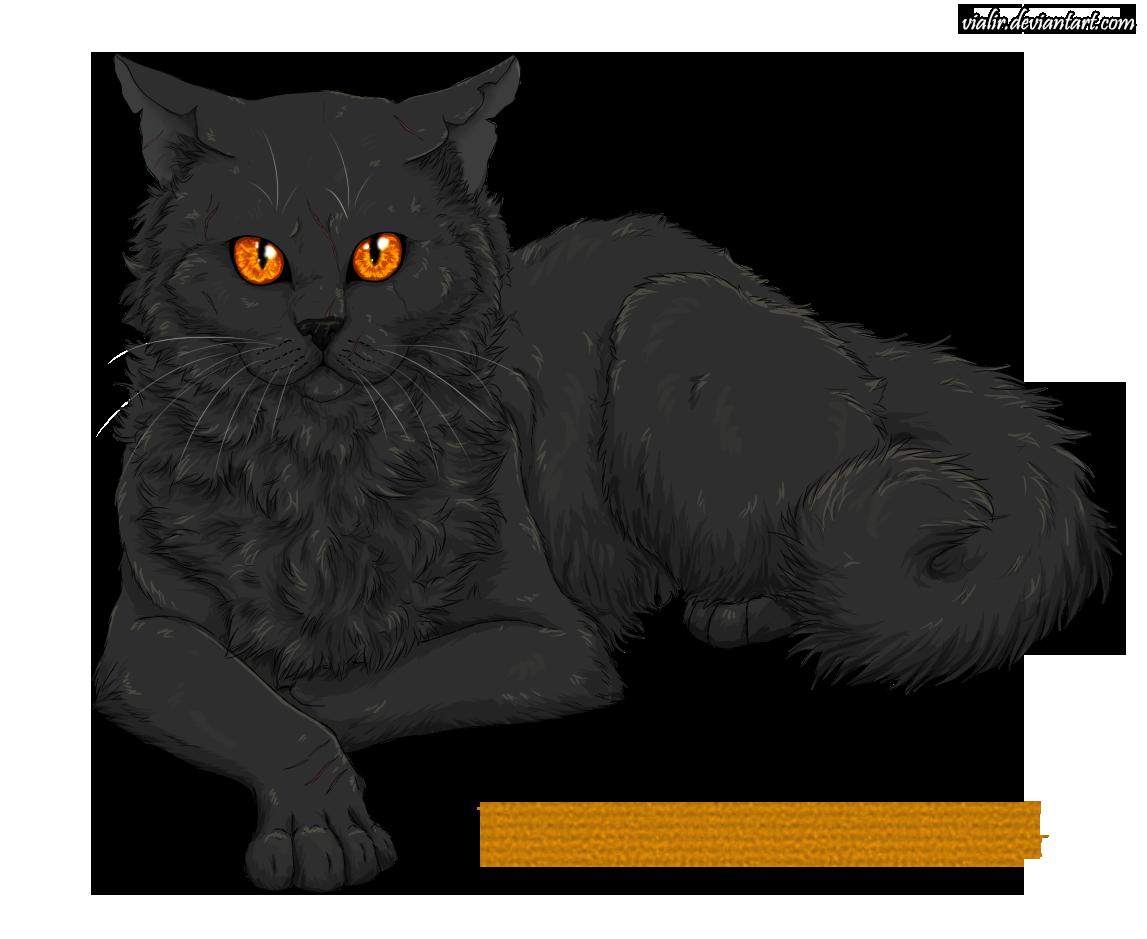 http://orig15.deviantart.net/99b5/f/2014/106/d/5/yellowfang_by_vialir-d7ep7av.png