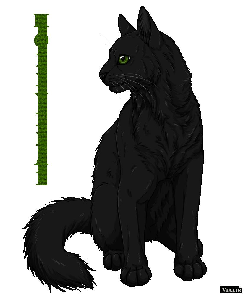 Warrior Cats Dawn Of The Clans Fanart: Hollyleaf By Vialir On DeviantArt