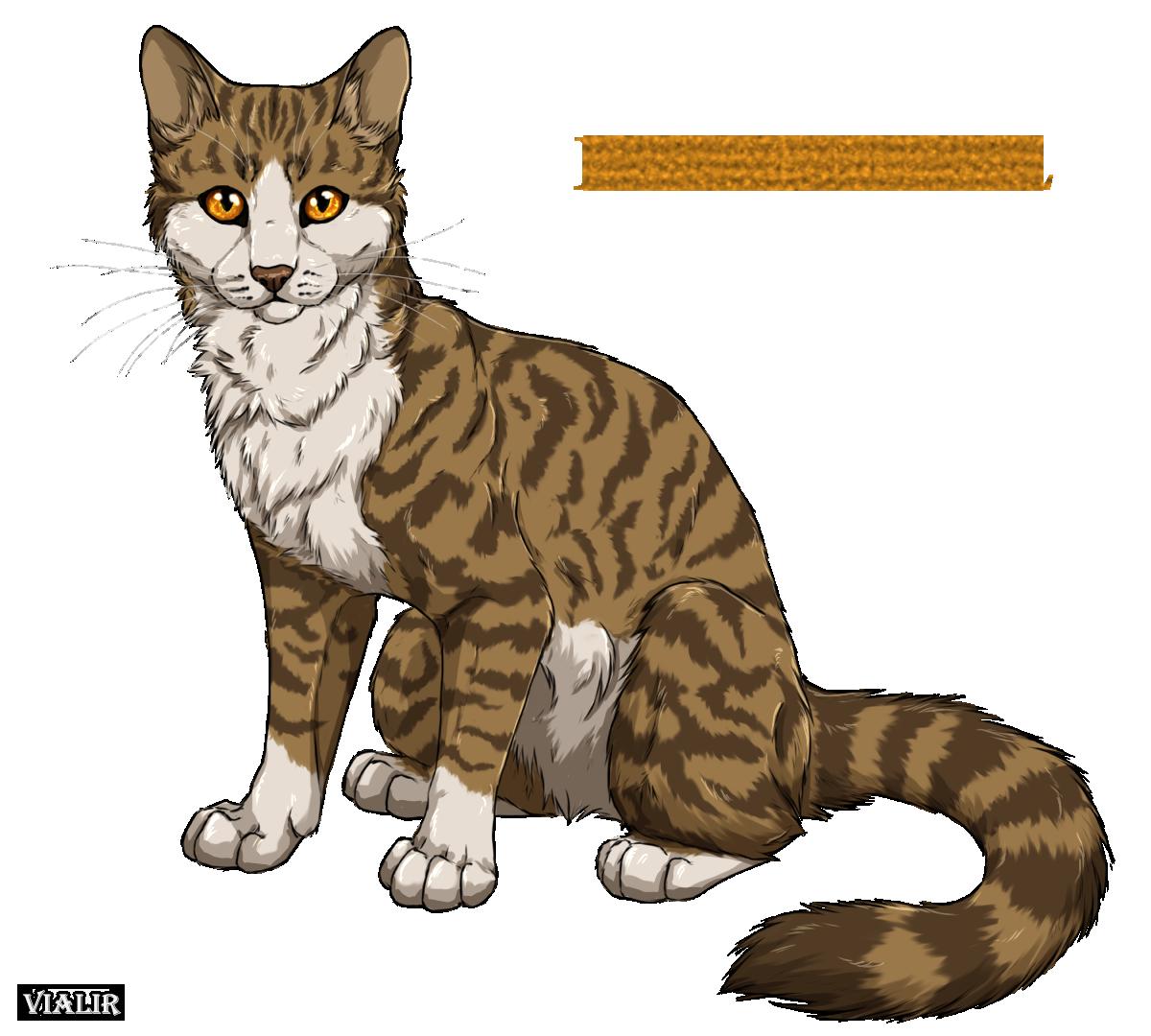 Výsledek obrázku pro warriors cats leafpool
