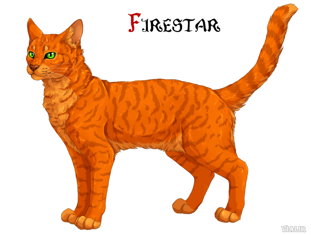 Analyzing Firestar's Characters by Dawnlily