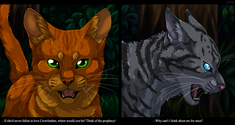 Warrior Cats Favourites By Xzellity182 On DeviantArt