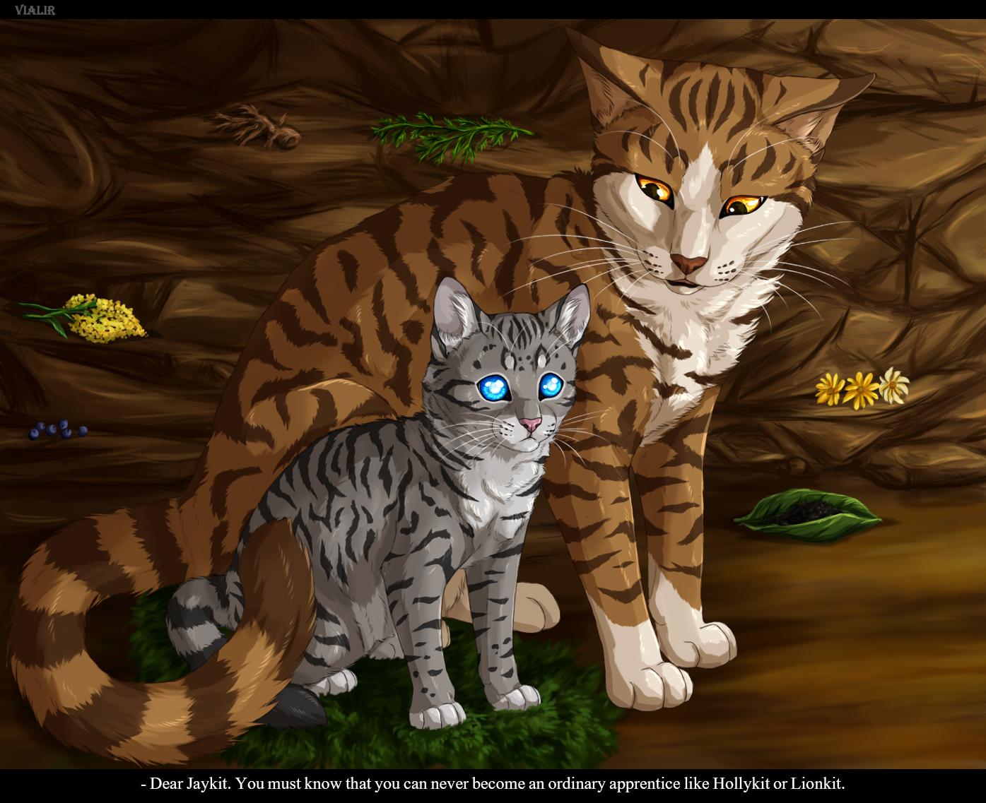 Rainpelt Warrior Cats