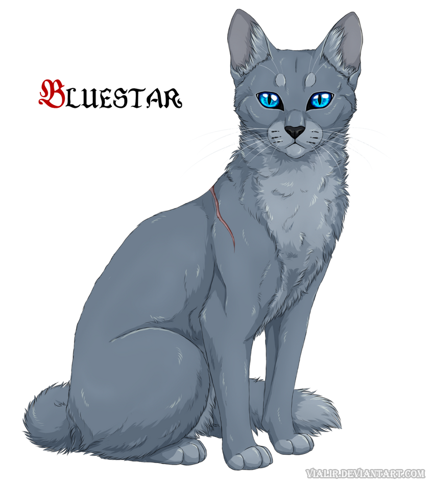 Bluestar by Vialir on DeviantArt Warrior Cat Drawings Bluestar