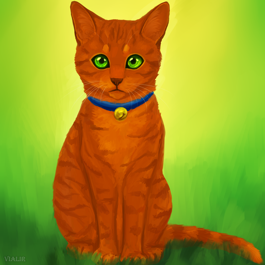 Images Of Firestar From Warrior Cats