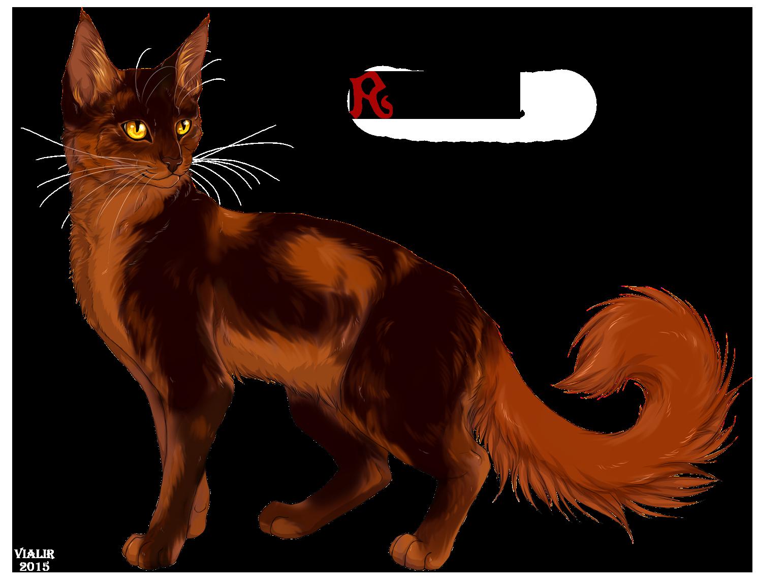 Male Cat Warrior Deviantart