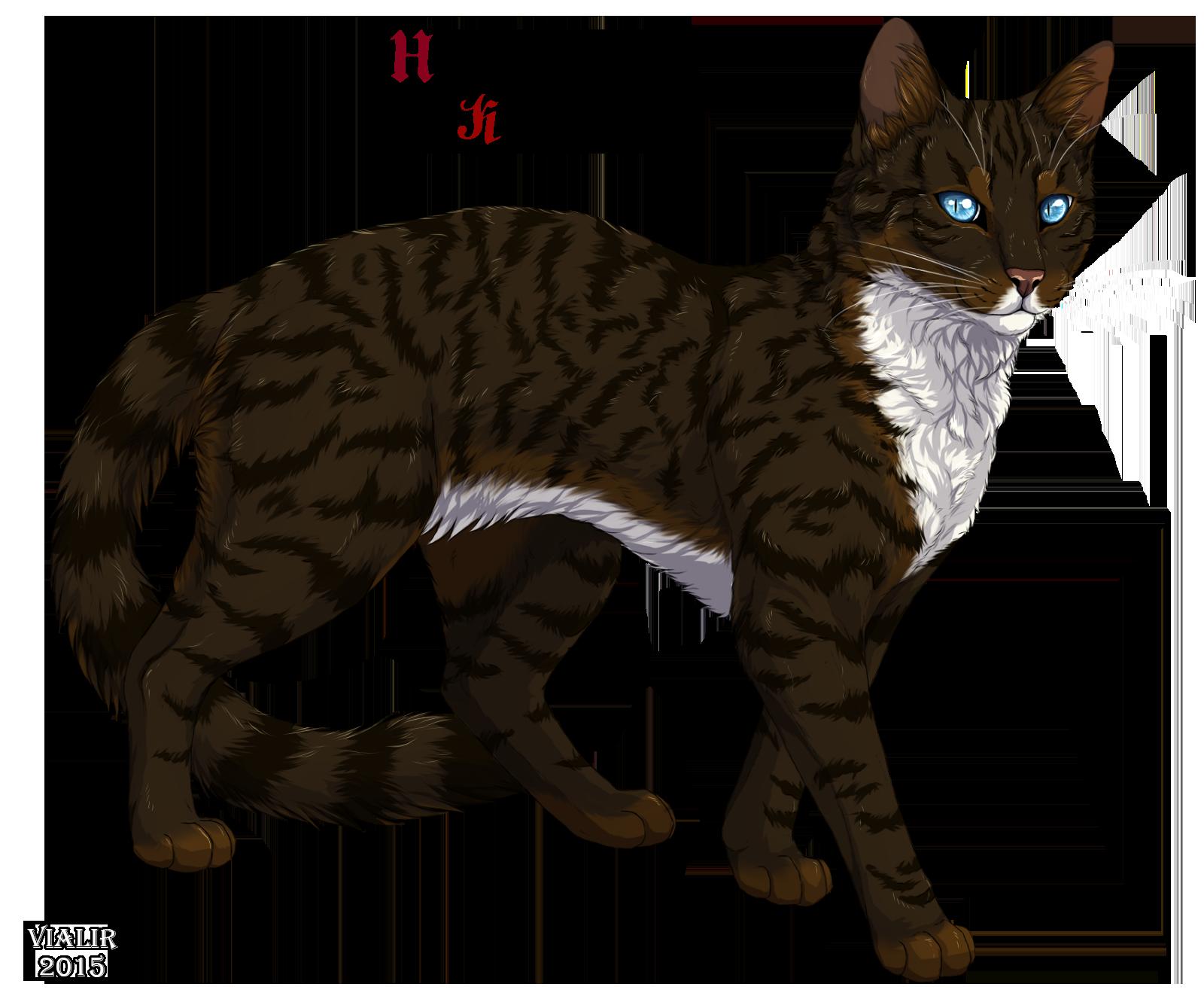 Cat Warriors Hawkfrost