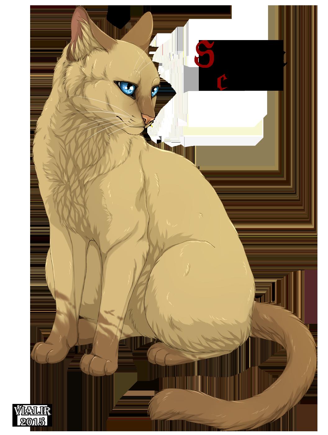 Warrior Cats Devianart