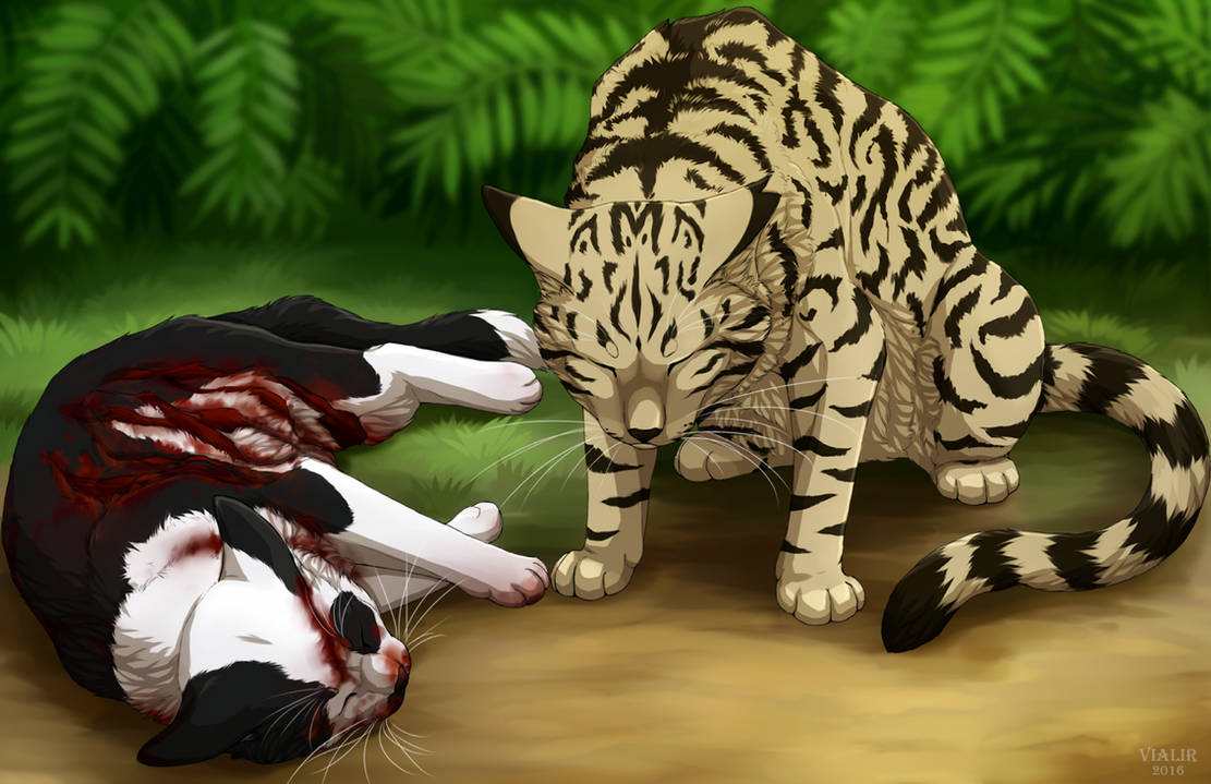 Swiftpaw And Longtail By Vialir On Deviantart