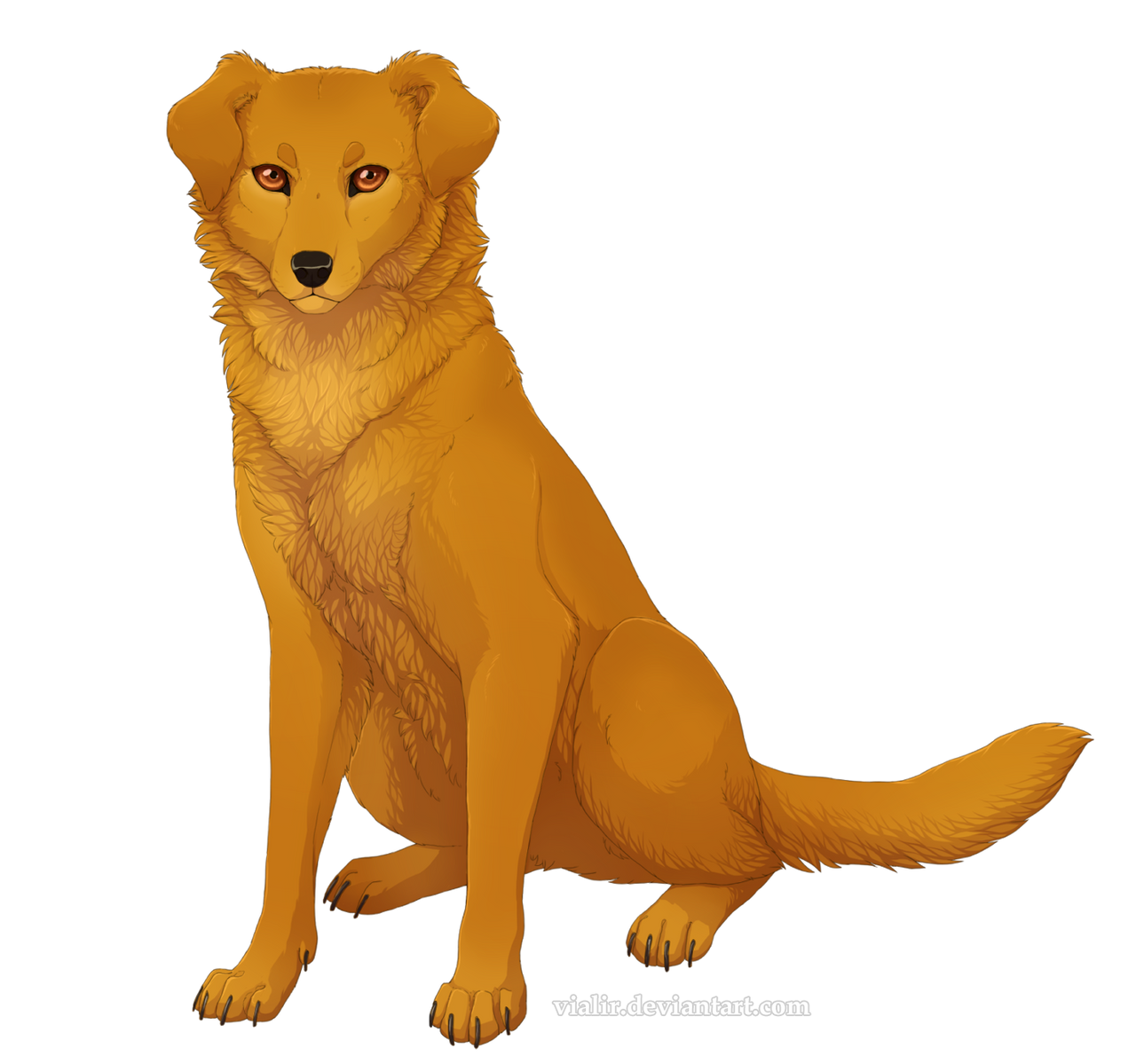 How Many Warriors Books By Erin Hunter Are There: Lucky By Vialir On DeviantArt