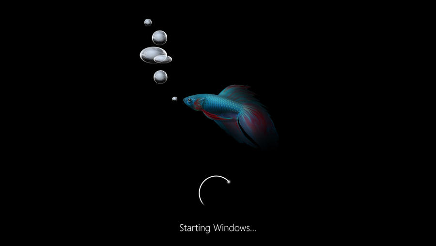 windows 8 loading screen