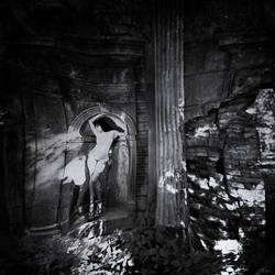 noir fairy by bitterev