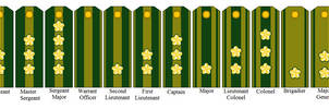 Rank Insignia of the Imperial Neo-Japanese Empire