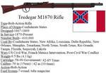Tredegar M1870 Rifle