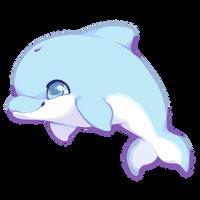 Cute Dolphin