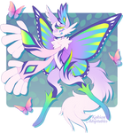 Butterfly Scarfox Auction - Closed