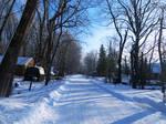 Snowy Street (2)